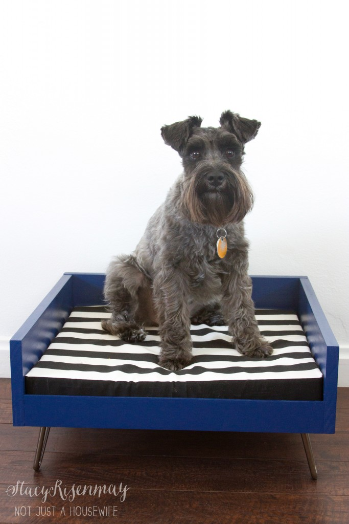tutorial for dog bed