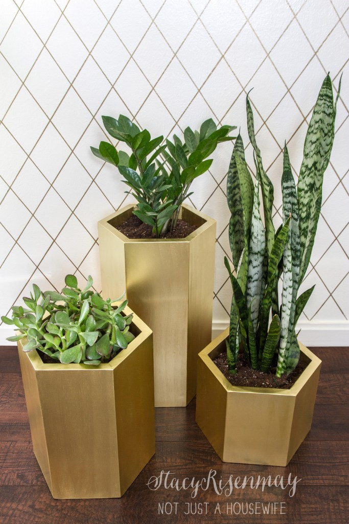 gold hexagon planters