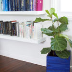 featured blue crate planter picture
