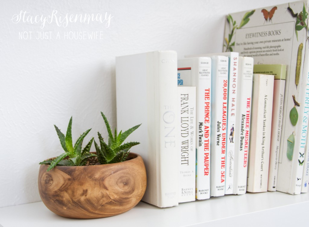 plants in wood bowl
