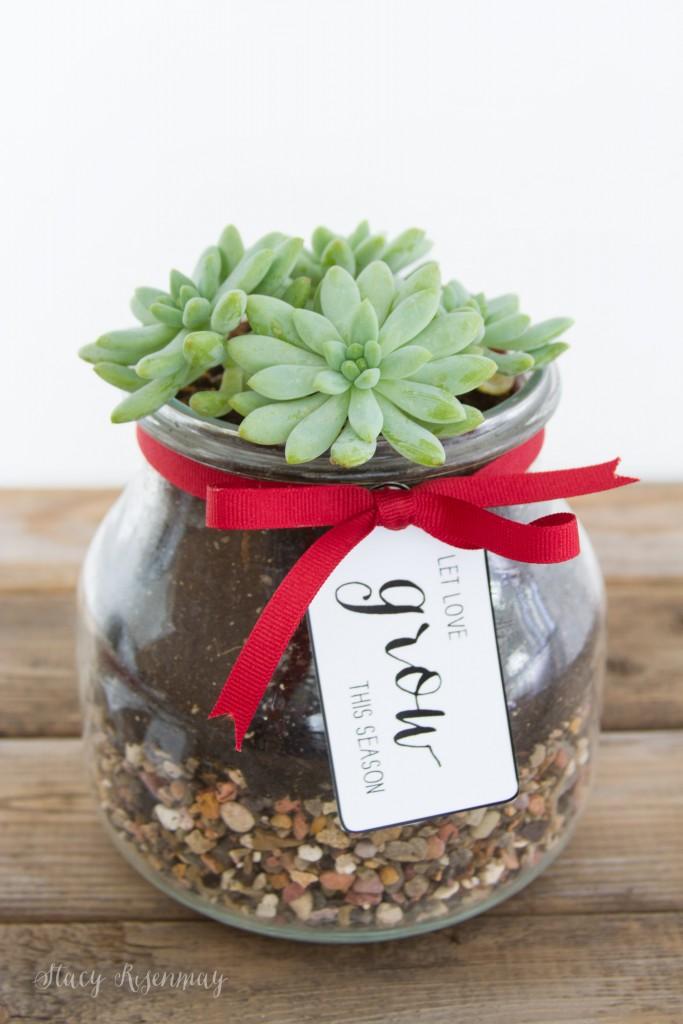 holiday gift idea