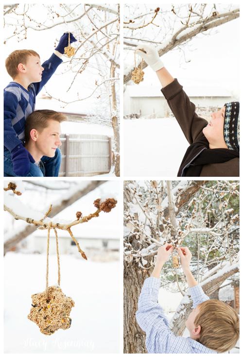 hanging-bird-feeder