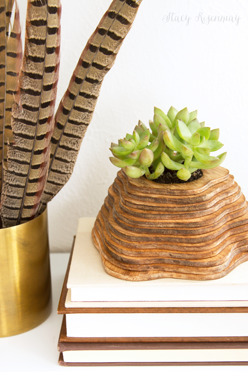topography planter
