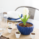 Hyacinth Bowl {Styled X3}