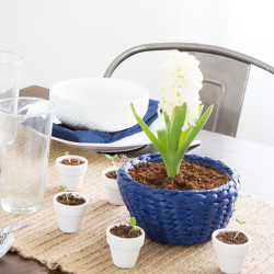 spring-table-setting-hyacinth