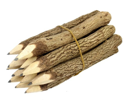 branch and twig pencils