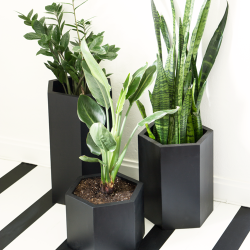 featured-image-black-hexagon-planters