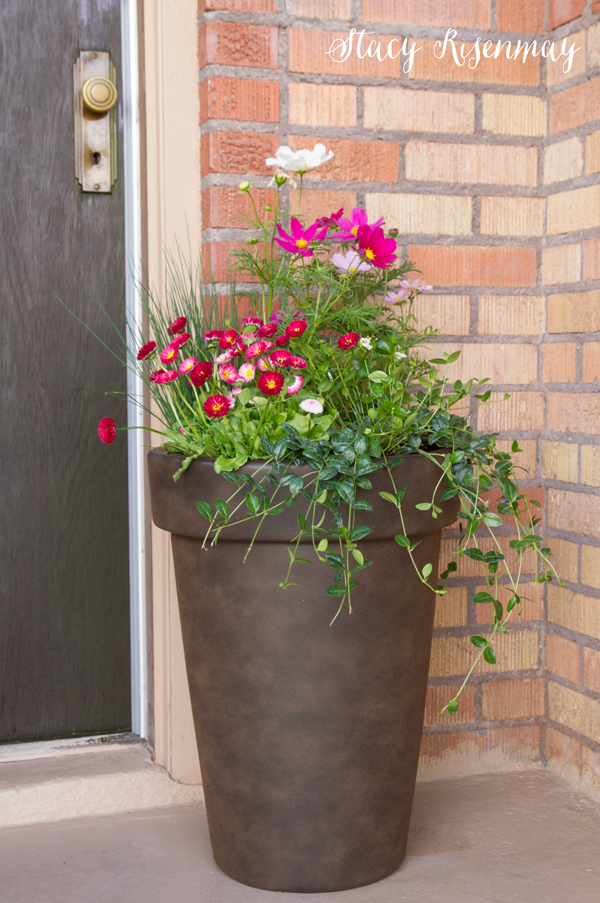 Tips For Planting Large Pots Stacy Risenmay