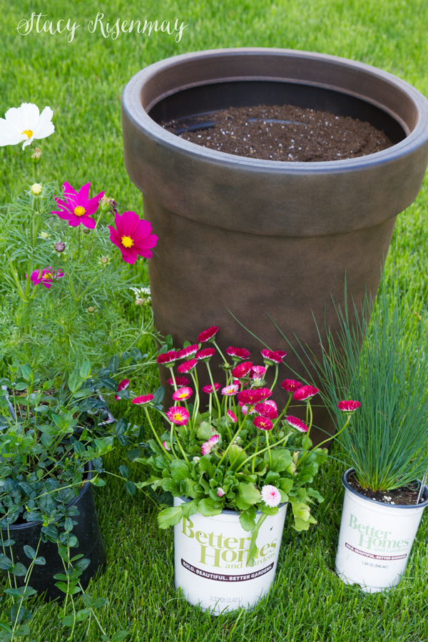 tips for planting pots