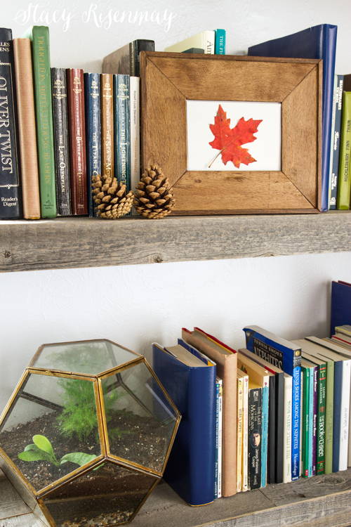 fall-bookshelf