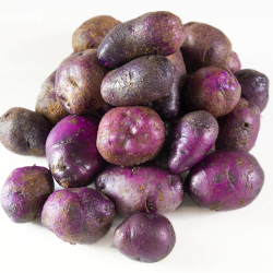 featured-image-purple-potatoes
