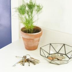 geometric-bowl-featured-image