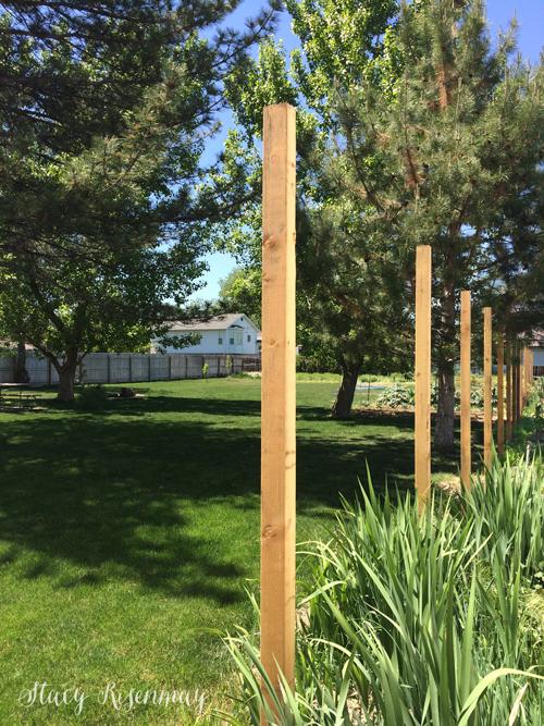fence-posts