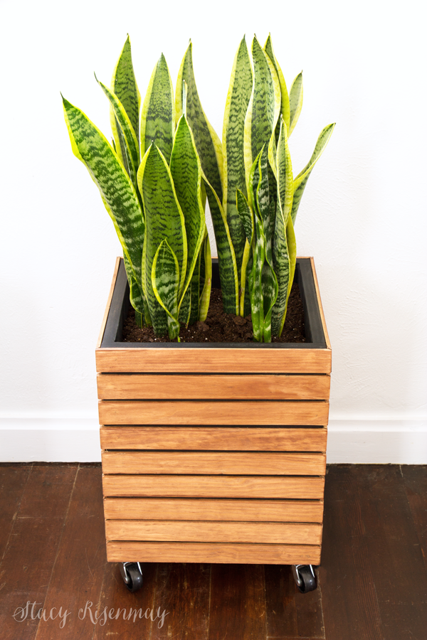 modern wood planter tutorial DIY Modern Planter