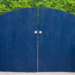 featured image painted gate