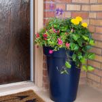 Summer Porches & Entryway