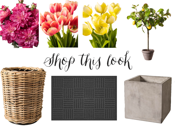 shop-this-look-balsam-hill