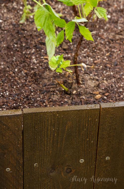 water-beading-on-planterbox