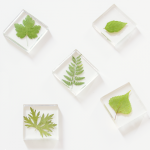 Leaf Resin Magnets