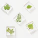 Leaf Resin Magnets