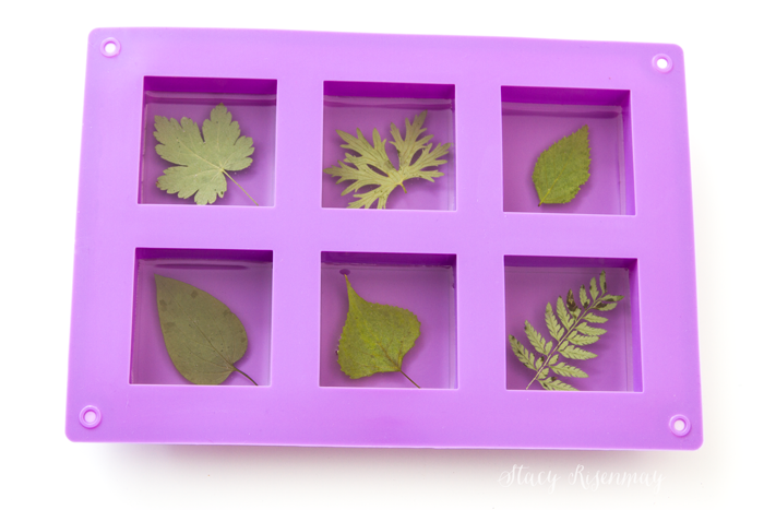 leaves-in-resin