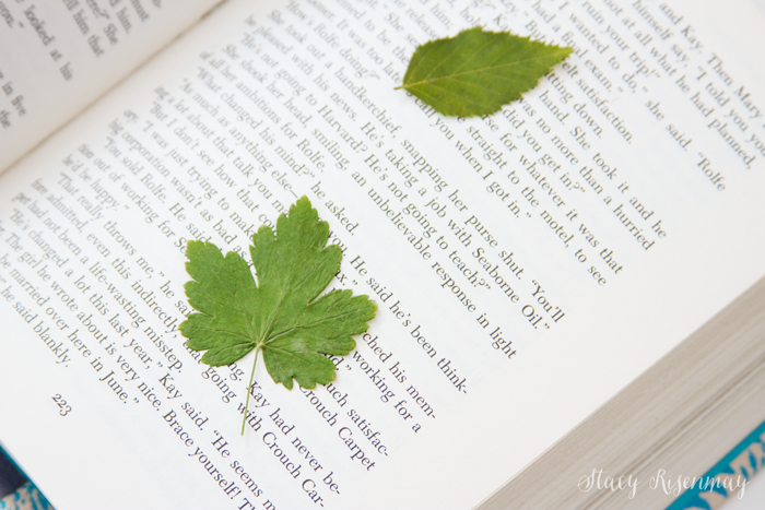 press-leaves-in-books