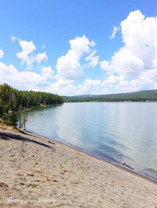 yellowstone-lake-shore