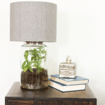 Easy DIY Terrarium Lamp