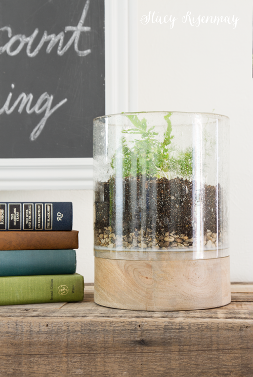 DIY terrarium made from candle holder
