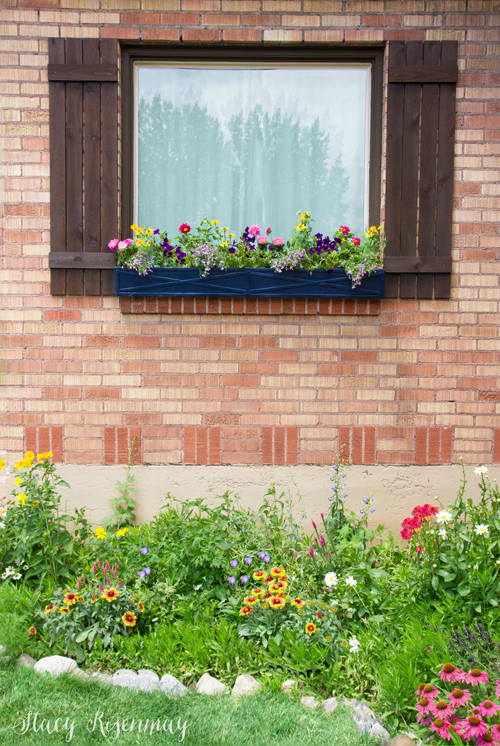 window boxes on cottage