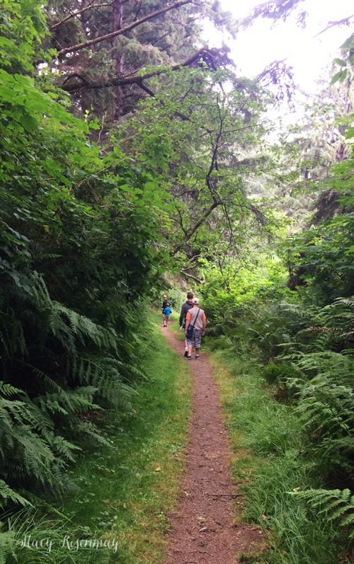 trail to hidden beach