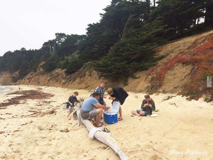 Seal Cove Beach in California