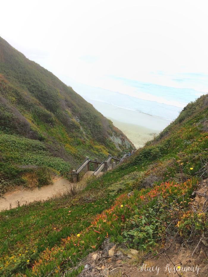 Stair leading to Sand Dollar Beach