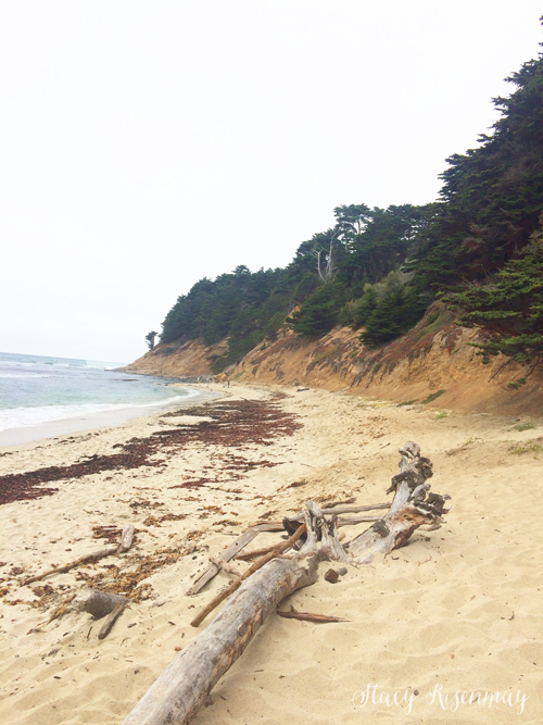 Seal Cove Beach in Moss Beach, California