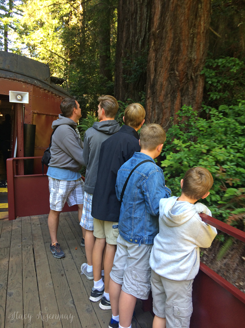 View deck on the skunk train