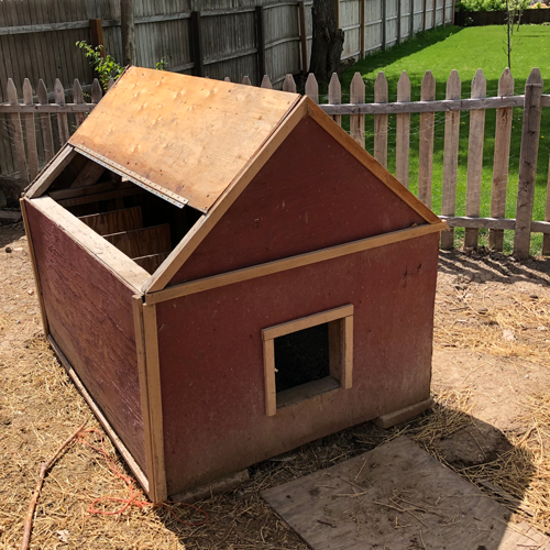old chicken coop