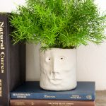 Clay Head Planter