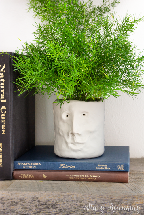 clay face planter with fern