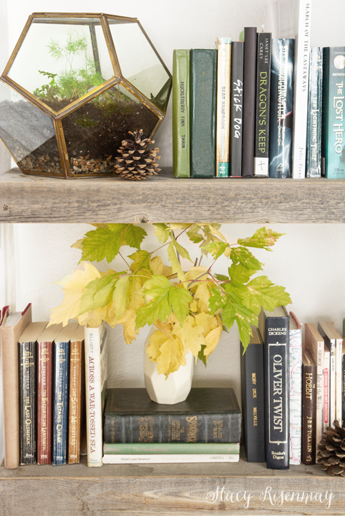 fall leaves on bookshelves