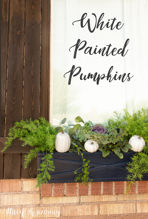 white pumpkins in window boxes