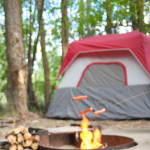 Why You Need A Battery Inverter While Camping